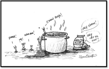 pasta rice image